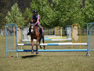Cross Country Jumping Course, Fernances Creek, Hunter Valley