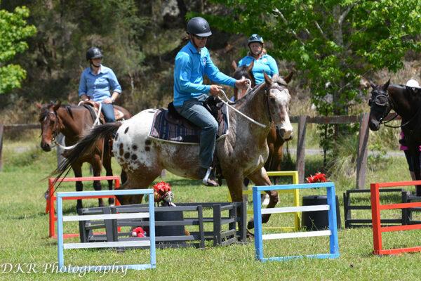 Fernances Creek, Working Equitation, Hunter Valley